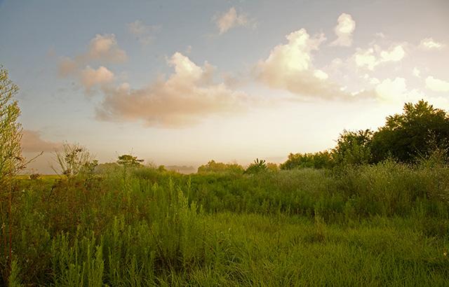 Adult hookup sites in meadow utah