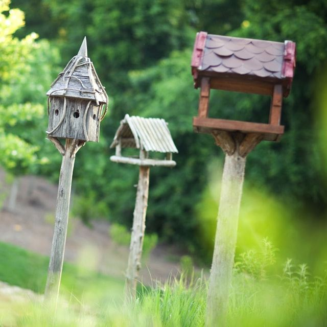 Briar Chapel bird houses.